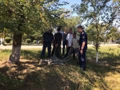 На Ставрополье осудят двух мужчин, нанесших жертве не менее 60 ударов палками и прутом