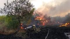 Горящие 170 га леса в Ростовской области тушат с применением авиации