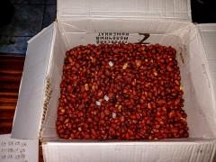 На Ставрополье предотвращена доставка запрещенных предметов в исправительную колонию