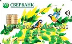 Только карта «Мир»: порядок выплаты пенсий в России изменится с 1 октября