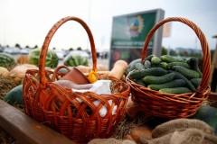 На Кубани 233 начинающих крестьянско-фермерских хозяйства получили господдержку