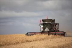 Ростсельмаш представил Михаилу Мишустину умный высокоавтоматизированный зерноуборочный комбайн.