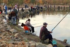 В Невинномысске прошёл городской фестиваль «Золотая рыбка»