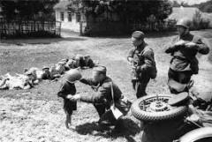 В Лабинском районе вспомнили о подвигах юных героев войны