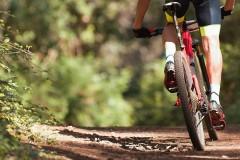 Власти Невинномысска поддерживают создание велотерренкура на КМВ