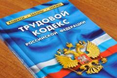 Светлана Бессараб: в Новом году вступят в силу важные изменения в Трудовом кодексе