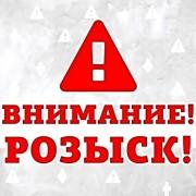 В Сальском районе Дона бесследно пропала Ирина Дуванская