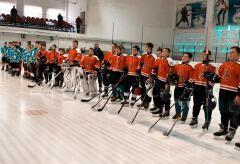 На Кубани прошли краевые соревнования «Золотая шайба»