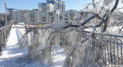 Снегопады, ледяной дождь и сильные морозы обрушились на регионы России