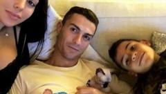 Португалец Роналду отправил кота самолетом на лечение в Испанию
