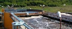 Учёные КубГУ получили грант РНФ на переработку сточных вод