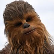 В США уличный артист в костюме Чубакки изрезал прохожего