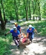 В Лоо спасатели транспортировали из леса женщину с травмой ноги