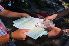 Приморский край возглавил рейтинг регионов по уровню мошенничества в ОСАГО
