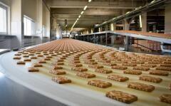 В Невинномысске откроют новое предприятие по производству кондитерских изделий