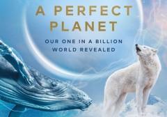 «Идеальная планета» Дэвида Аттенборо: премьера документального фильма на телеканале «Моя Планета»