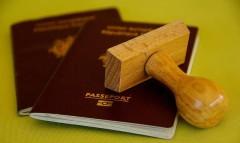 Сочинские пограничники выявили семерых иностранцев-нелегалов в погранзоне