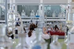 В Краснодарском крае требуется свыше 75 тысяч специалистов