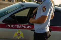 В Анапе росгвардейцы задержали подозреваемого в краже денег и телефона