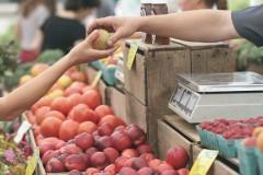 Песков: кабмин держит под контролем ситуацию с ценами на продукты