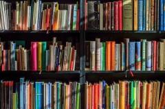 Опрос: 80% краснодарских семей высоко оценивают качество образования в местных учебных заведениях