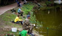 Глава Невинномысска рассказал, почему нельзя ловить рыбу в парке