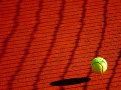 Даниил Медведев сыграет с Феликсом Оже-Альяссимом в 1/2 финала US Open