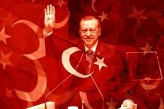 Путин и Эрдоган встретятся в сентябре в Сочи
