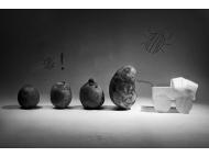Картофельная история-3