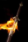 Огненный дзянь