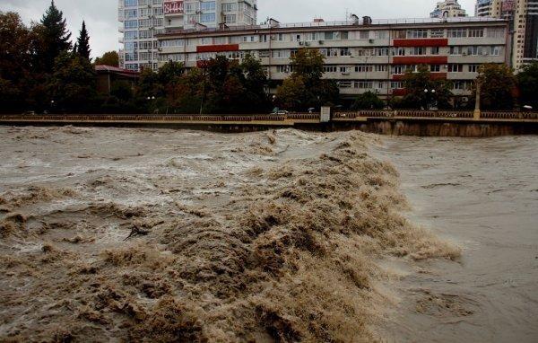 Ученые предсказали рост рискованных природных явлений в Российской Федерации