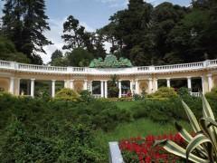 В сочинском парке «Дендрарий» появился виртуальный гид
