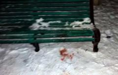 В Донецкой области во время пьяной драки убили военнослужащего ВСУ