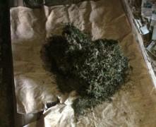 В ставропольском селе Пелагиада у мужчины дома нашли марихуану