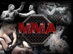 В ситуации с массовой дракой на ринге в Дагестане разберется Союз ММА