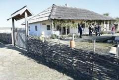 На Кубани за 1,5 года открылось более 30 объектов сельского туризма