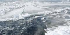 В Москве два подростка провалились под лед