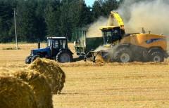 Адыгея за год увеличила объем сельхозпроизводства на 13,5%