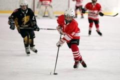 Хоккейный «Сочи» летний хоккейный лагерь для детей