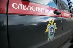 Уголовное дело возбуждено по факту гибели трех детей в ДТП в Подмосковье
