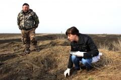 На Дону накормили лис, волков и шакалов вакциной от бешенства