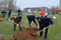 Специалисты «Ростелекома» Калмыкии высадили около 100 деревьев