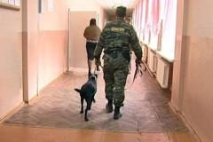В Краснодаре из-за сообщения о бомбе эвакуирована СОШ №44