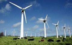 Первый в России мощный ветропарк построят в Адыгее