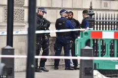 СМИ: В Лондоне исламисты планируют осуществить два теракта