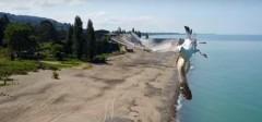 В Сочи чайка увернулась от столкновения с дроном