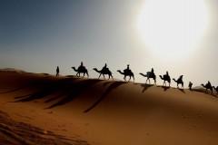 Через 100 лет пустыня Сахара может полностью