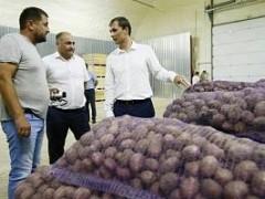 В Тимашевском районе открыли овощехранилище мощностью 6 тыс. тонн