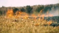 На Дону сохраняется чрезвычайная пожароопасность