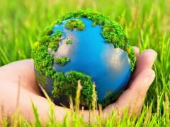 На Дону  пройдет «экологический» день приема граждан